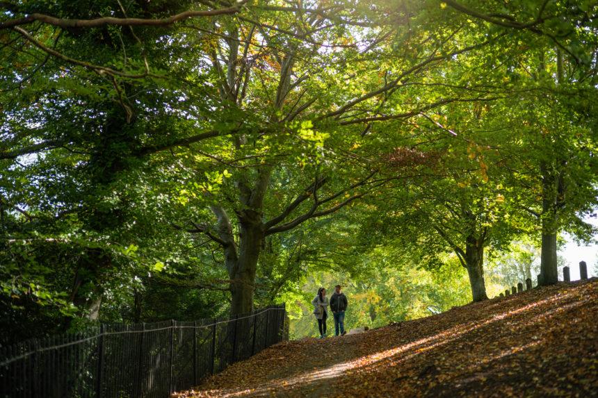 Alexandra Park Bath
